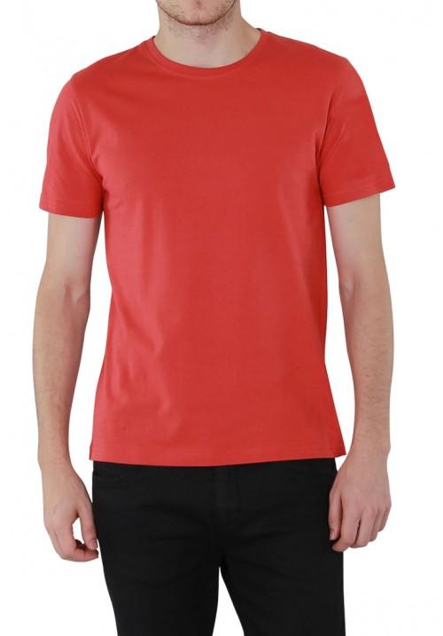 T-Shirt (Olive)